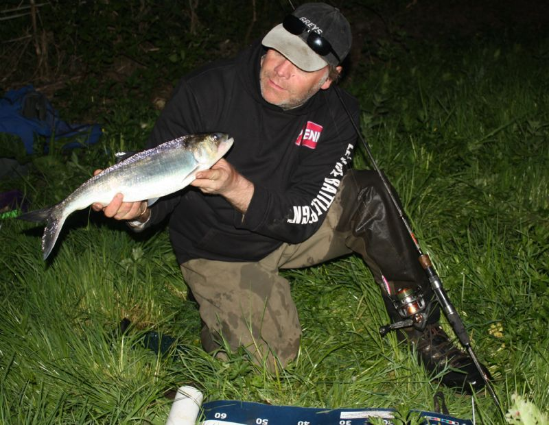 River Barrow, guiding for Shad