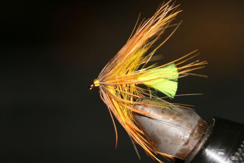 boatfly11.JPG