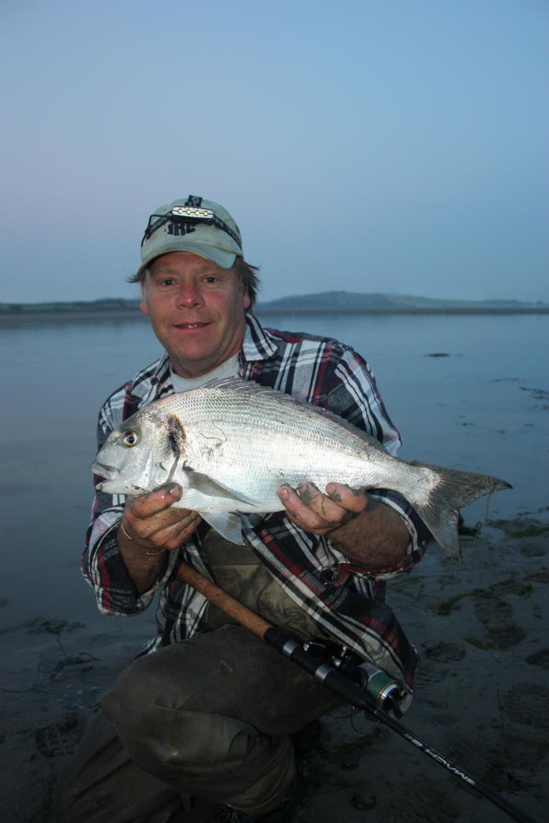 Fishing in ireland angling ireland fishbream gilthead for Fishing in ireland