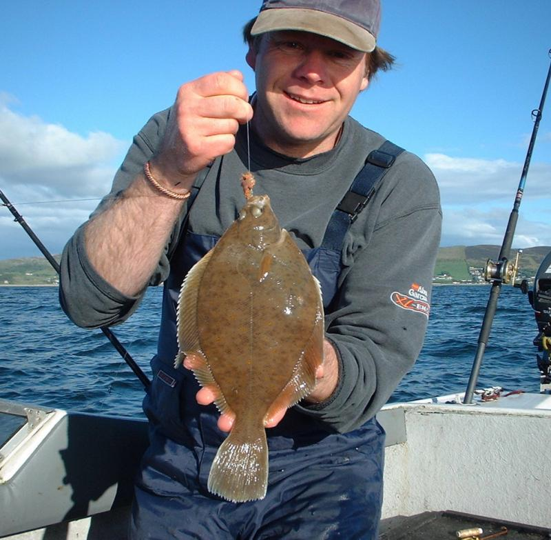 Fishing in ireland angling ireland salt water fish id for Sand dabs fish